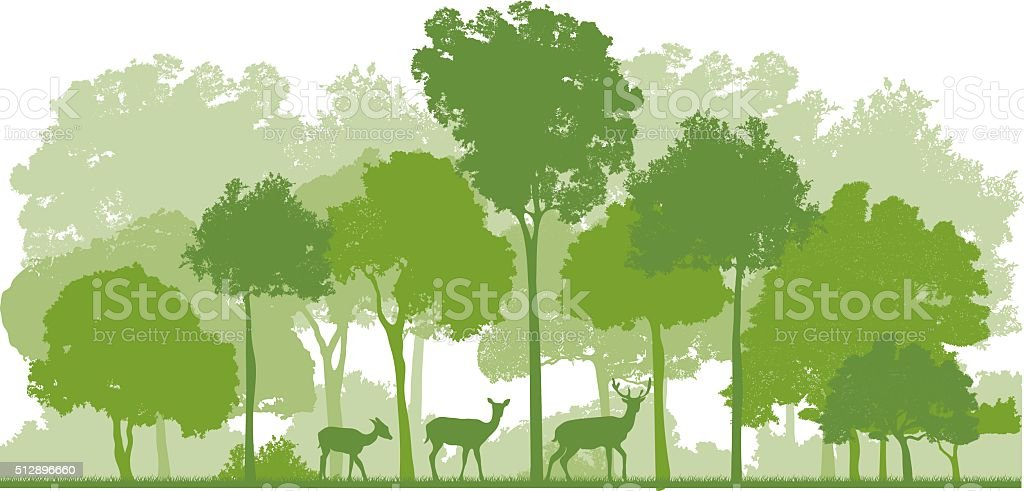 forest and deer family vector art illustration