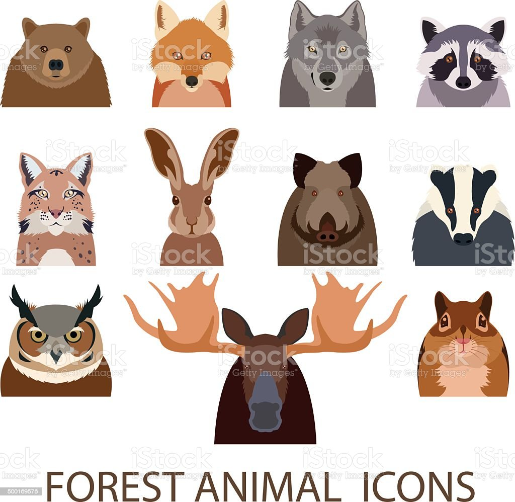 Forest animal flat icons vector art illustration
