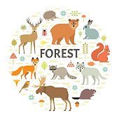 Vector concept with forest animals arranged in a circle. Isolated on white background.