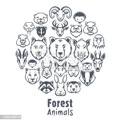 Forest animals design