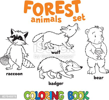 Forest Animals Coloring Book Stock Vector Art & More Images of ...