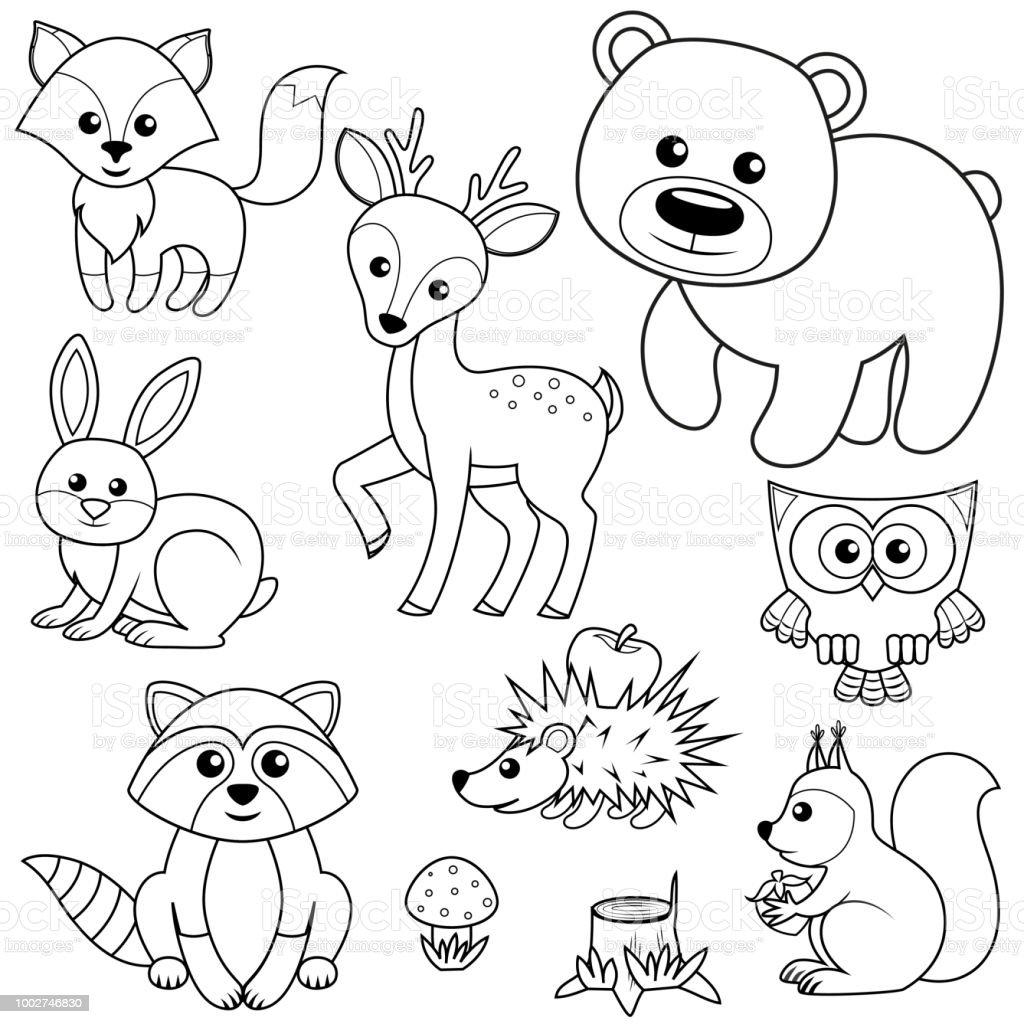 Orman Hayvanları Tilki Ayı Raccon Tavşan Geyik Baykuş Kirpi Sincap