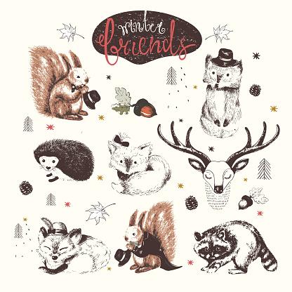 Forest animals hand drawn set
