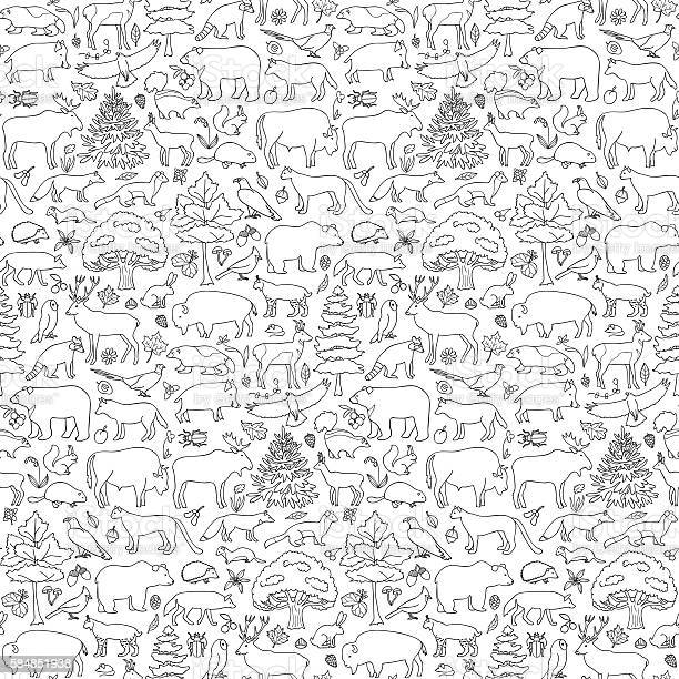 Forest animals seamless pattern vector id584851938?b=1&k=6&m=584851938&s=612x612&h=rnq2hltytcgylgd9nlccbynxms3jtox3vdwciou7ha0=