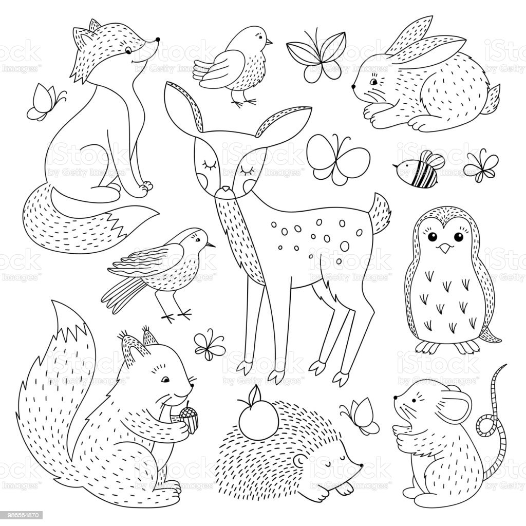 Forest Animals Set Cute Wild Animals Outline Hand Drawn Illustration Stock Illustration Download Image Now Istock