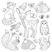 Forest animals set. Cute wild animals outline hand drawn illustration