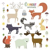 Forest animals set in flat style.