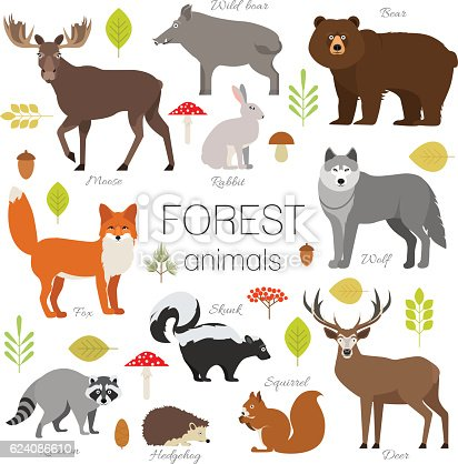 Set of forest animals isolated vector. Moose, wild boar, bear, fox, rabbit, wolf, skunk, raccoon, deer, squirrel, hendgehog