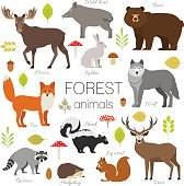 Forest animals set isolated vector. Moose, bear, fox, wolf, skunk