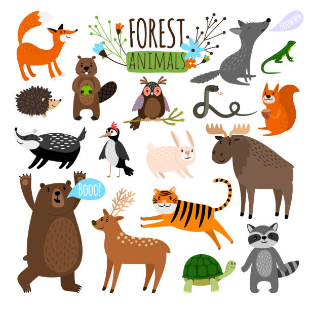 forest tiere set - tierkinder stock-grafiken, -clipart, -cartoons und -symbole