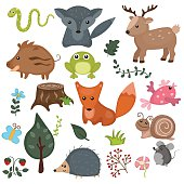 Forest animals vector set of icons and illustrations.
