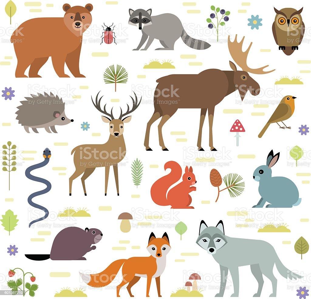 Animais da floresta - ilustração de arte em vetor