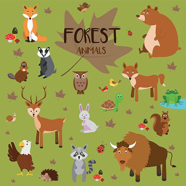 forest animals vector illustration set - eagle character stock illustrations, clip art, cartoons, & icons