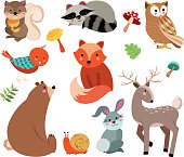 Cute woodland forest animals vector set.