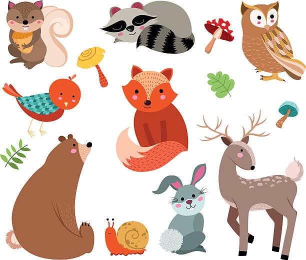 forest tiere vektor - lustige schnecken stock-grafiken, -clipart, -cartoons und -symbole