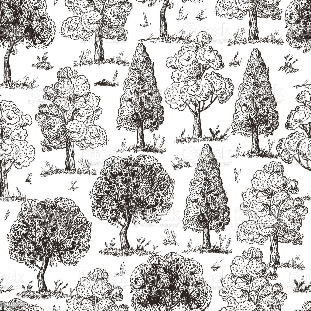 Drawing Christmas Tree Sketch.Forest Background Deciduous Trees Seamless Pattern Hand Drawn Tree Sketch Ink Pen Drawing Vector Illustration Stock Illustration Download Image Now