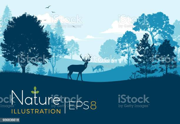 Forest background with deer vector id936836618?b=1&k=6&m=936836618&s=612x612&h=twunkgjuqurzpy dqf4n5 wjpb4fs3jc3avawxa2lga=