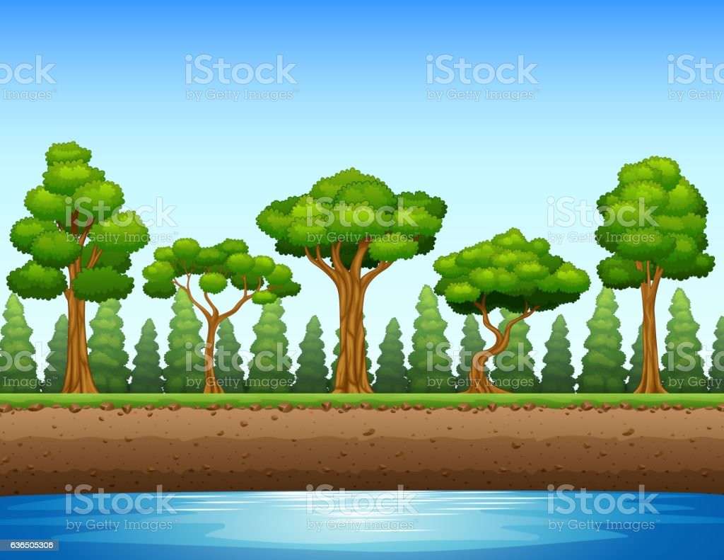 Forest background with river and underground vector art illustration