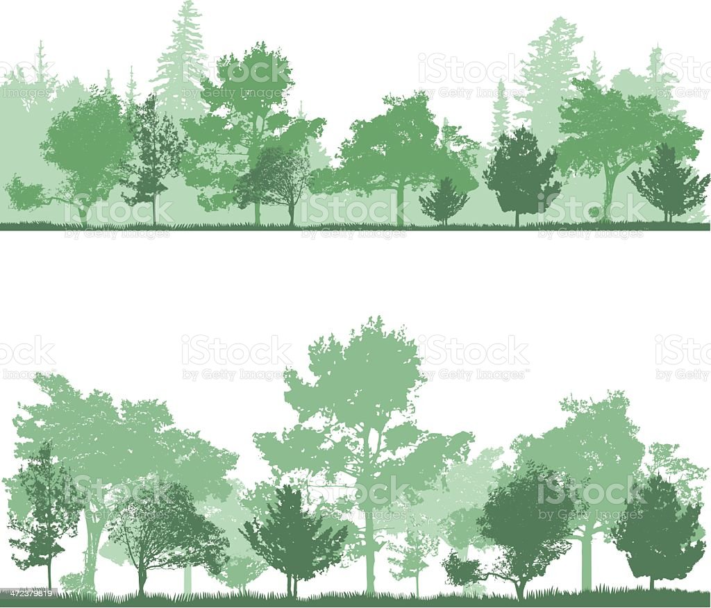 Forest backgrounds in shades of green vector art illustration