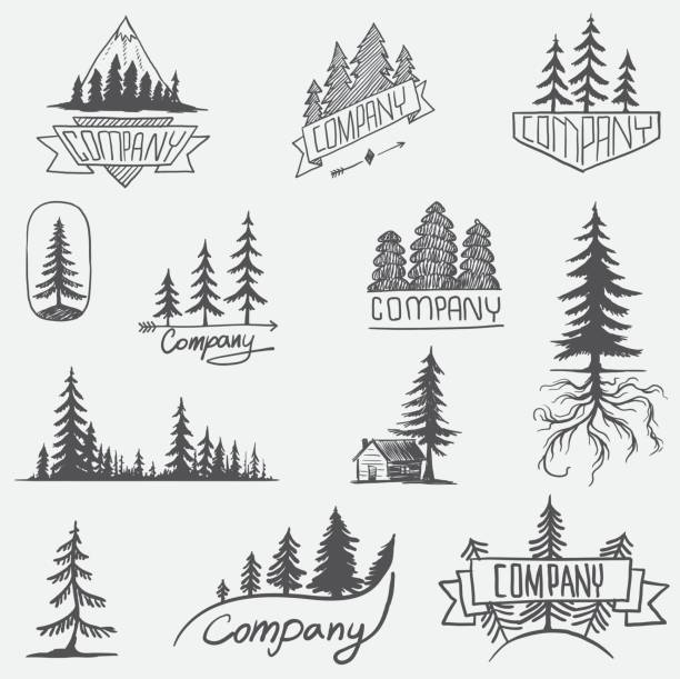 forest badge tree vector set isolated - vintage nature stock illustrations, clip art, cartoons, & icons