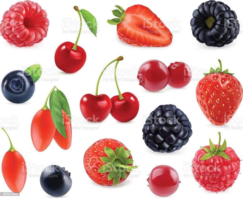 Forest berry. 3d vector icons set. Realistic illustration