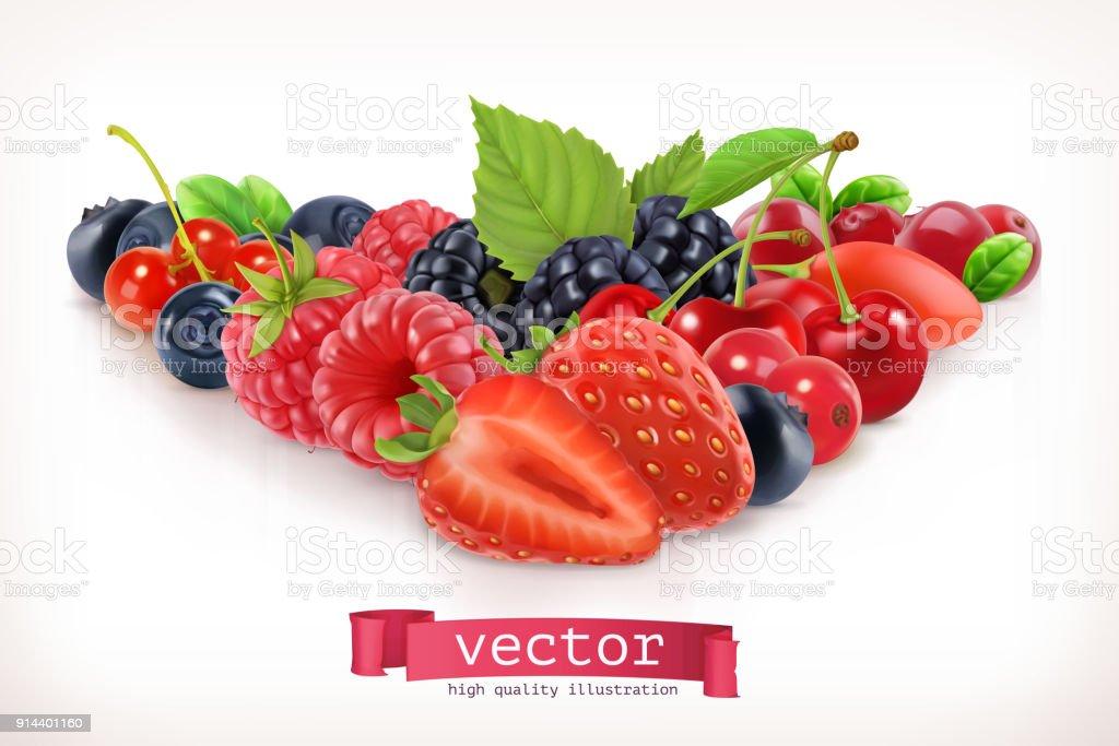 Forest berry. Sweet fruit vector art illustration