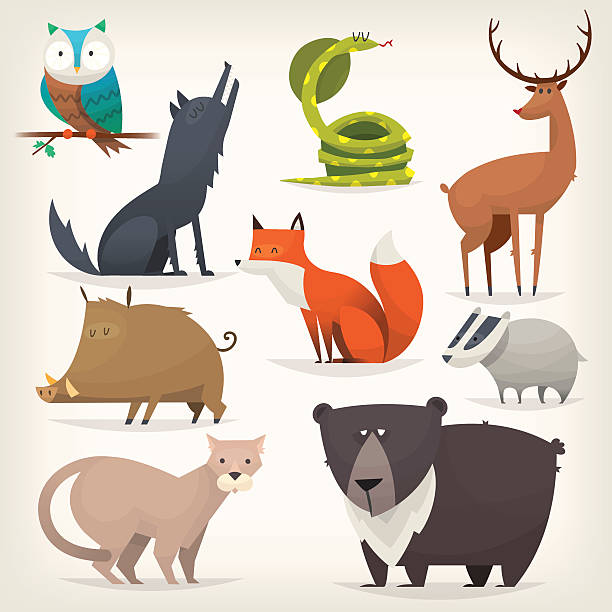 Forest birds and animals Set of popular colorful vector forest animals and birds cute wolf stock illustrations