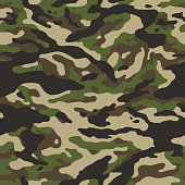 istock forest camouflage seamless pattern 1217381965