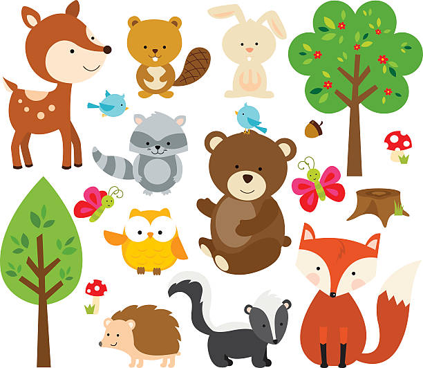 forest tierwelt - tierkinder stock-grafiken, -clipart, -cartoons und -symbole