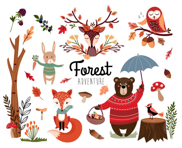 Forest elements collection with autumnal items Forest elements collection with autumnal background, hand drawn seasonal items isolated on white bird clipart stock illustrations