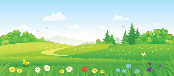 ilustraciones, imágenes clip art, dibujos animados e iconos de stock de bosque los campos - paisajes de dibujos animados