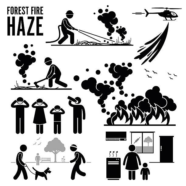bildbanksillustrationer, clip art samt tecknat material och ikoner med forest fire and haze problems pictogram - skog brand