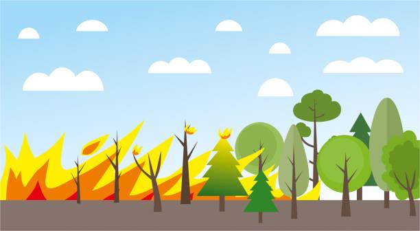 stockillustraties, clipart, cartoons en iconen met forest fire illustratie - illustraties van bosbrand