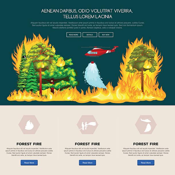 bildbanksillustrationer, clip art samt tecknat material och ikoner med forest fire,  in  landscape damage, nature ecology disaster, hot burning - skog brand