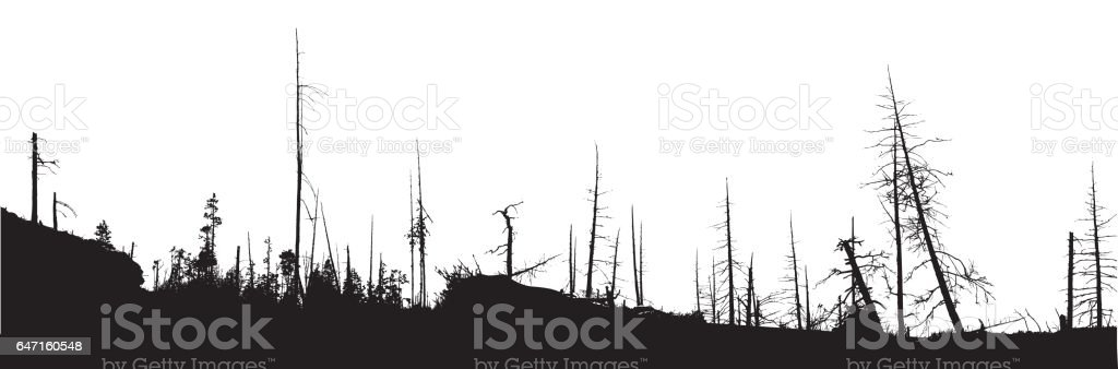 Forest Fire Natural Disaster vector art illustration