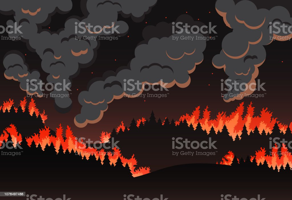 Forest fire panorama van het natuurlijke landschap, nacht silhouet - Royalty-free Abstract vectorkunst