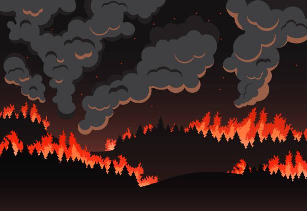 stockillustraties, clipart, cartoons en iconen met forest fire panorama van het natuurlijke landschap, nacht silhouet - illustraties van bosbrand