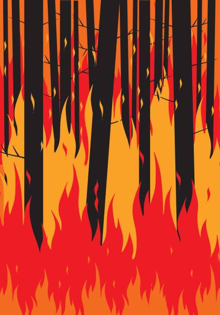 Forest Fire Scene Stock Vector Art More Images Of Abstract