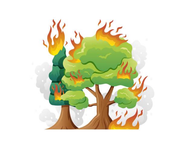 bildbanksillustrationer, clip art samt tecknat material och ikoner med skogsbrand vektor illustration - skog brand