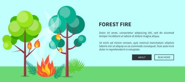 bildbanksillustrationer, clip art samt tecknat material och ikoner med forest fire web affisch med inskription. vektor - skog brand