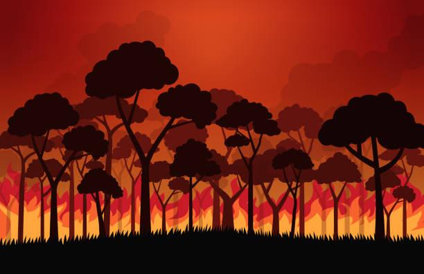 bildbanksillustrationer, clip art samt tecknat material och ikoner med skogs bränder brinnande träd i brand flammor-vektor illustration - skog brand