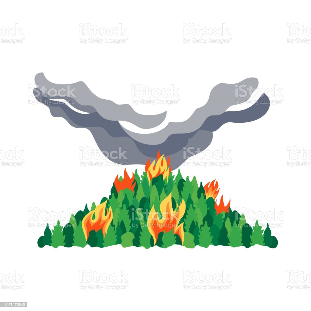 Forest Fires Disaster Trees Flat Vector Icon Stock Illustration Download Image Now Istock 4087 views | 6658 downloads. forest fires disaster trees flat vector icon stock illustration download image now istock