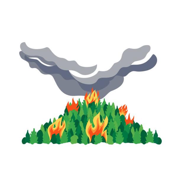 bildbanksillustrationer, clip art samt tecknat material och ikoner med skogsbränder katastrof träd platt vektor ikon - skog brand