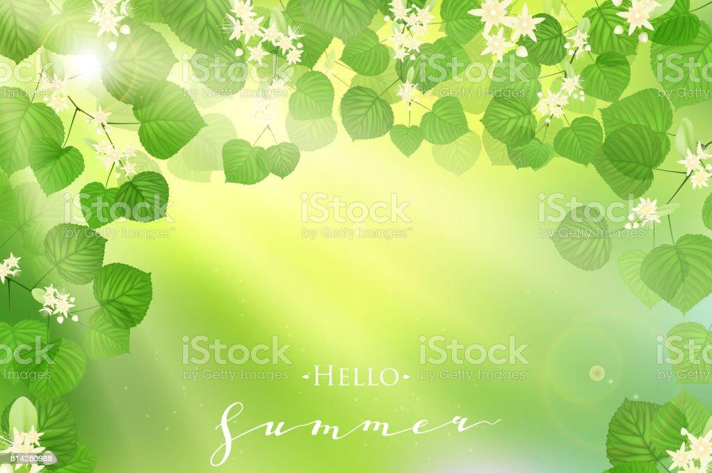Ilustración de Hojas De Color Verde Fresco Bosque Con Rayos Del Sol ...