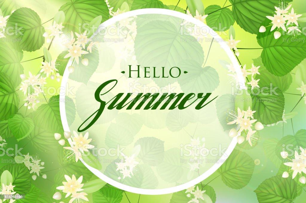 Hojas De Color Verde Fresco Bosque Con Rayos Del Sol Primavera Y ...