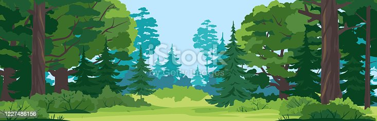 istock Forest glade nature landscape backgroun 1227486156