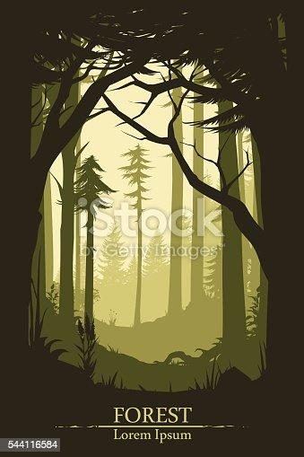 Forest illustration background in vector