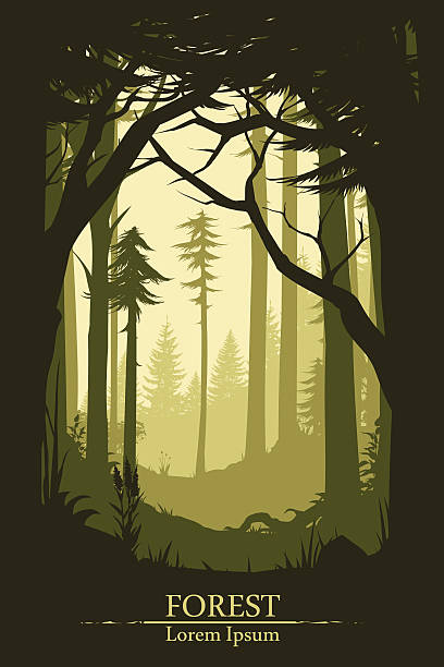 Forest illustration background Forest illustration background in vector dreamlike stock illustrations
