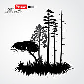 Landscape abstract black silhouette forest island illustration