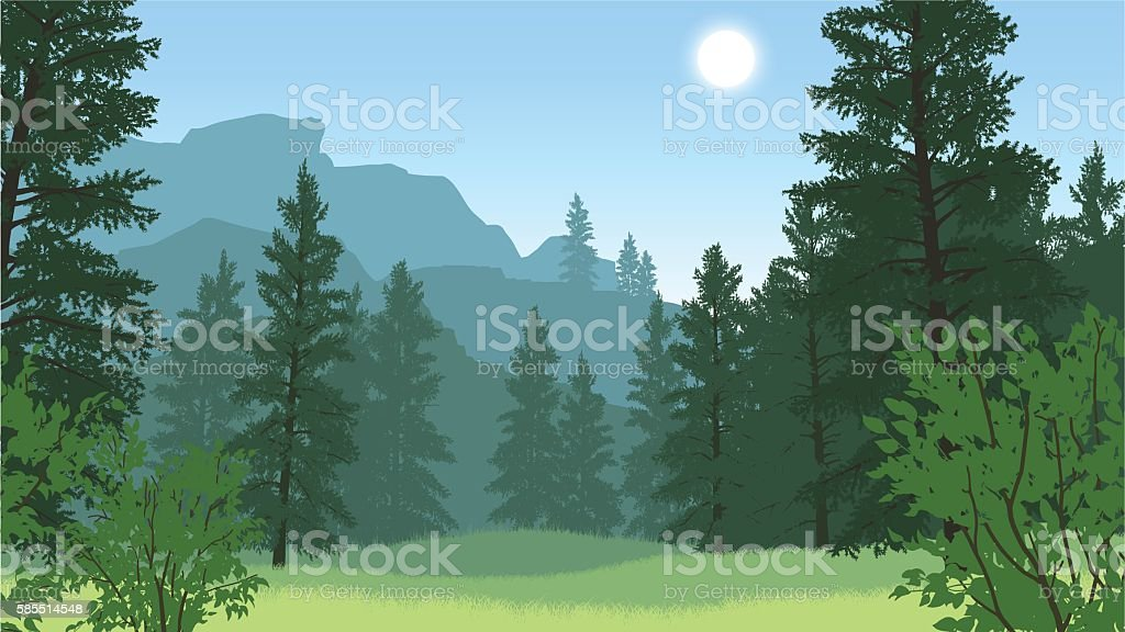Paisaje de bosque de ilustración - ilustración de arte vectorial